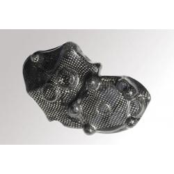 Protection de carter alternateur carbone lightech ZX10R 08-10