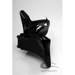Araignée support compteur carbone CARBONIN BMW S1000RR 2010 2012
