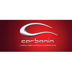 Carénage complet polyester CARBONIN APRILIA RSV 1000 99-2004