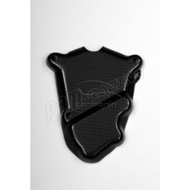 Protection carter allumage carbone S1000RR 2009-2017, HP4, S1000R 2014-2016 CARBONIN