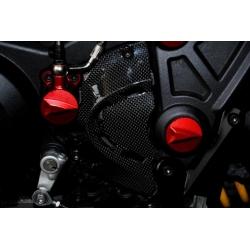 Carter pignon de sortie de boite carbone Tamburini Ducati Diavel
