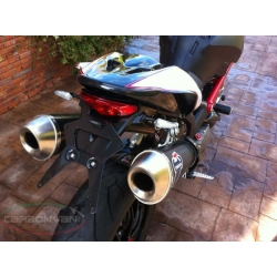Support de plaque carbone (sans éclairage) Ducati Monster 696 / 796 / 1100