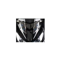 Bulle carbone LIGHTECH KAWASAKI Z800